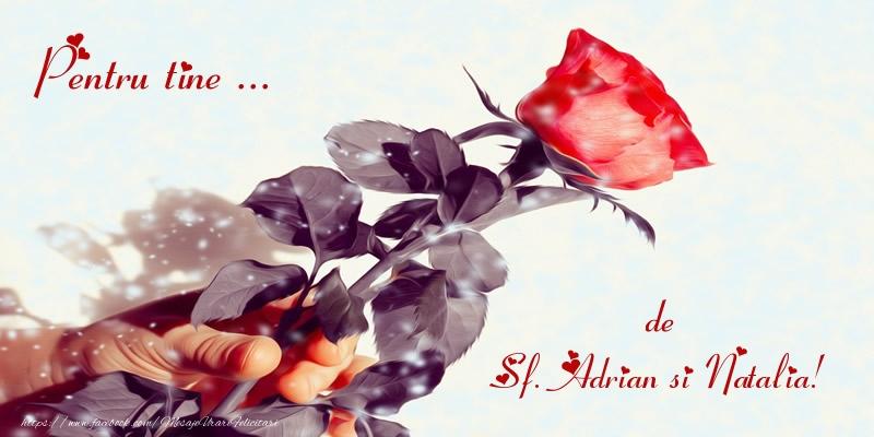 Felicitari de Sfintii Adrian si Natalia - Pentru tine ... de Sf. Adrian si Natalia!