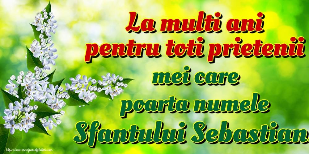 Felicitari de Sfântul Sebastian - La multi ani pentru toti prietenii mei care poarta numele Sfantului Sebastian!