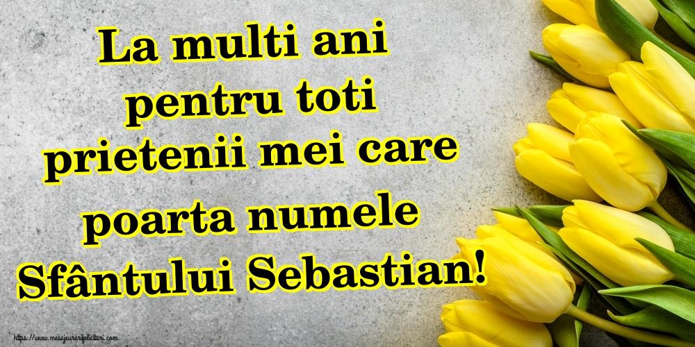 Felicitari de Sfântul Sebastian - La multi ani pentru toti prietenii mei care poarta numele Sfântului Sebastian!