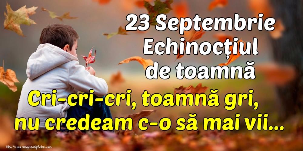 Toamnă 23 Septembrie Echinocțiul de toamnă Cri-cri-cri, toamnă gri, nu credeam c-o să mai vii...