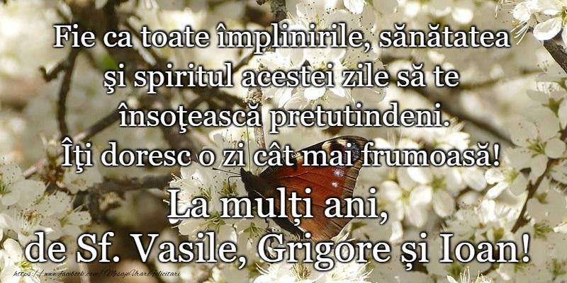 Felicitari de Sfintii Vasile, Grigore si Ioan - La multi ani de Sfintii Vasile, Grigore si Ioan!