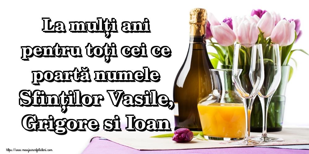 Felicitari de Sfintii Vasile, Grigore si Ioan - La mulți ani pentru toți cei ce poartă numele Sfinților Vasile, Grigore si Ioan - mesajeurarifelicitari.com