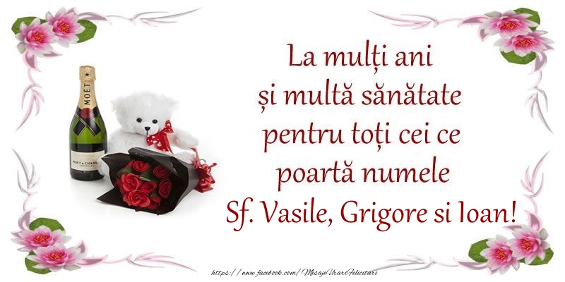 La multi ani si multa sanatate pentru toti ce poarta numele Sf. Vasile, Grigore si Ioan!