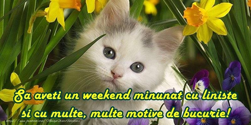 Weekend placut prieteni!