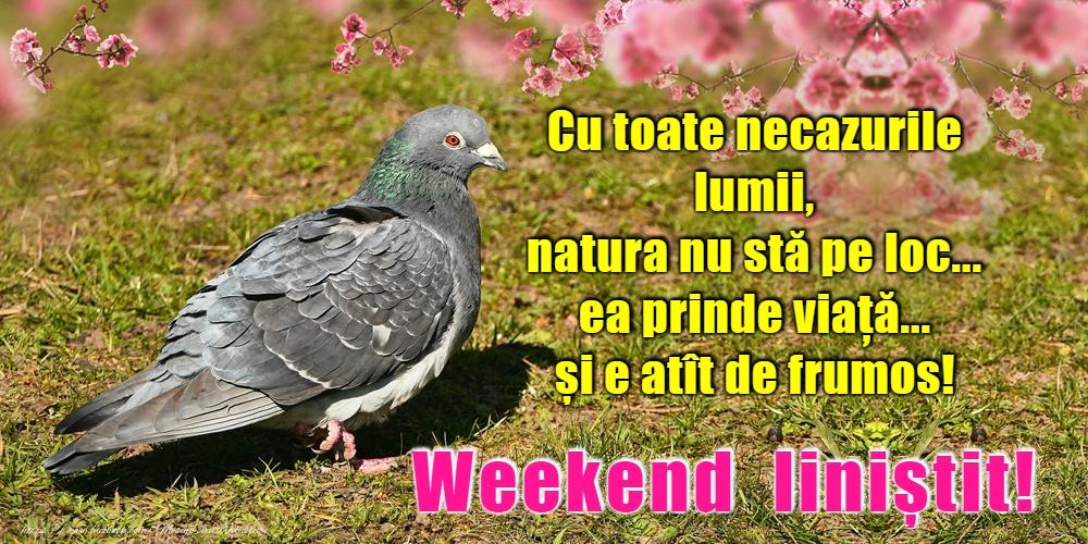 Felicitari de Weekend - Weekend placut prieteni!