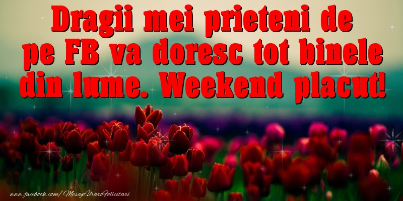 Weekend Dragii mei prieteni de pe FB