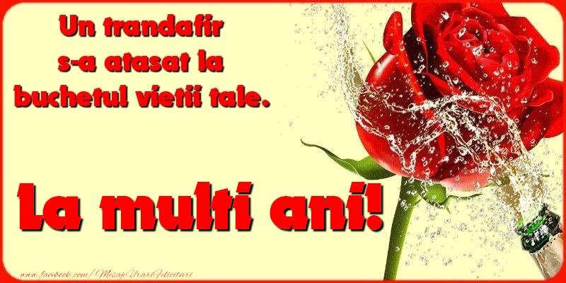 Felicitari de zi de nastere - La multi ani - mesajeurarifelicitari.com