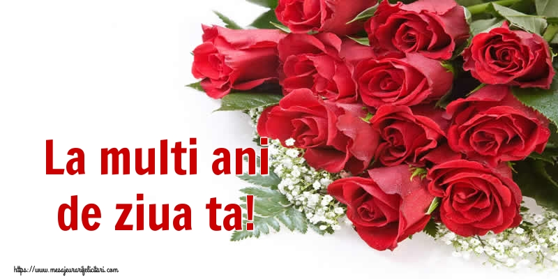 Felicitari de zi de nastere - La multi ani de ziua ta! - mesajeurarifelicitari.com