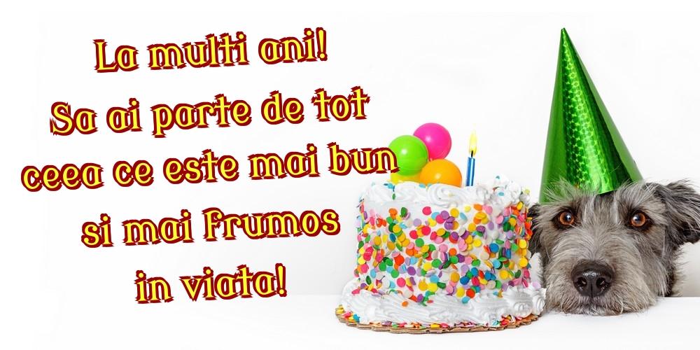Felicitari de zi de nastere - La multi ani! Sa ai parte de tot ceea ce este mai bun si mai frumos in viata!