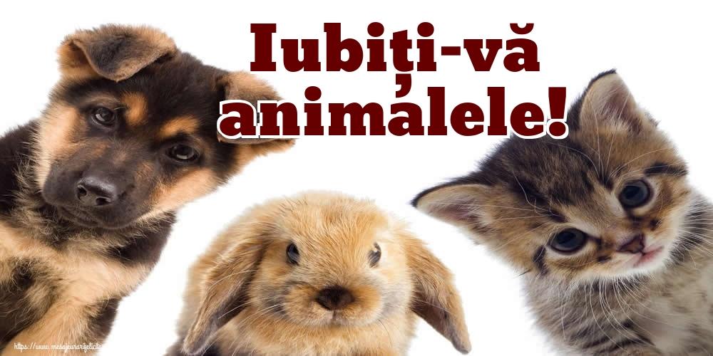 Cele mai apreciate felicitari de Ziua Animalelor - Iubiţi-vă animalele!