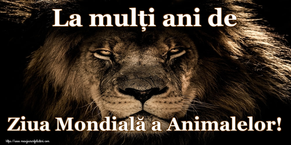 Felicitari de Ziua Animalelor - La mulţi ani de Ziua Mondială a Animalelor!