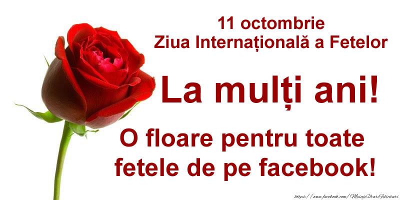 O floare pentru toate fetele de pe facebook!