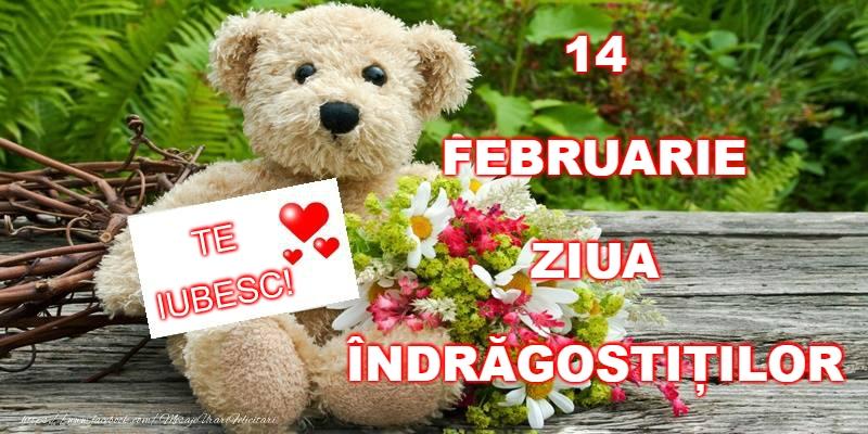 Felicitari Ziua indragostitilor - Happy Valentine's Day!