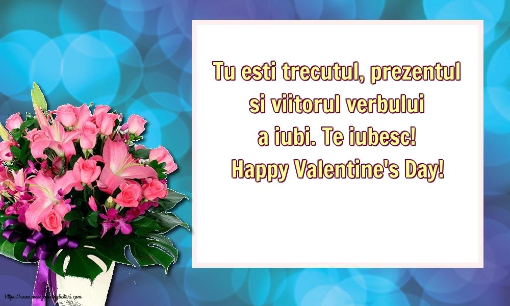 Te iubesc! Happy Valentine's Day!