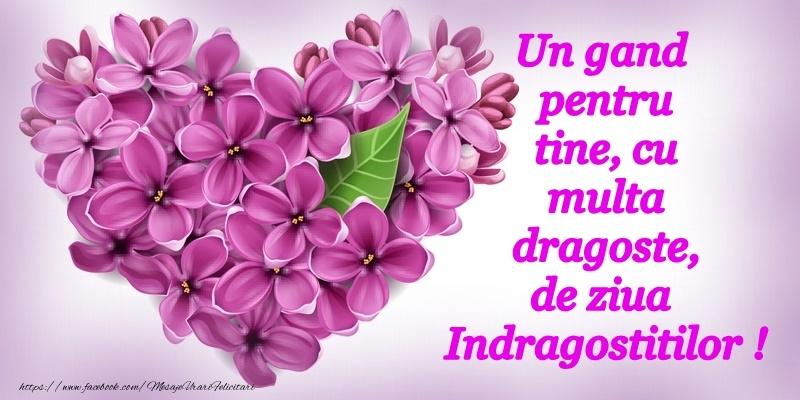 La multi ani de Ziua Indragostitilor!
