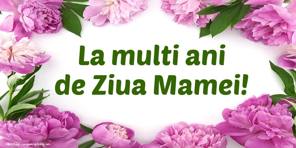 La multi ani de Ziua Mamei!