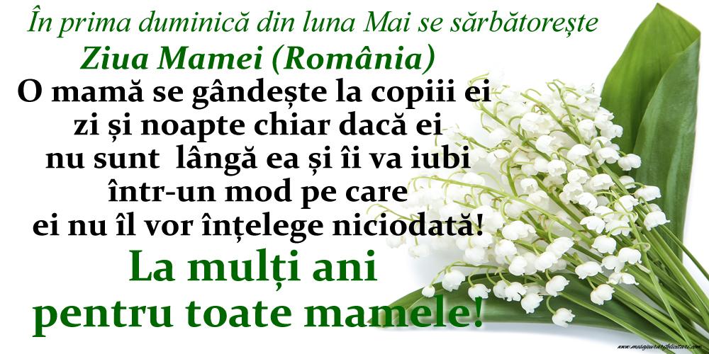Ziua Mamei În prima duminică din luna Mai se sărbătorește  Ziua Mamei (România) - La mulți ani pentru toate mamele!