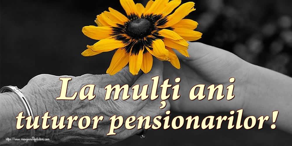 Cele mai apreciate felicitari de Ziua Pensionarului - La mulți ani tuturor pensionarilor!