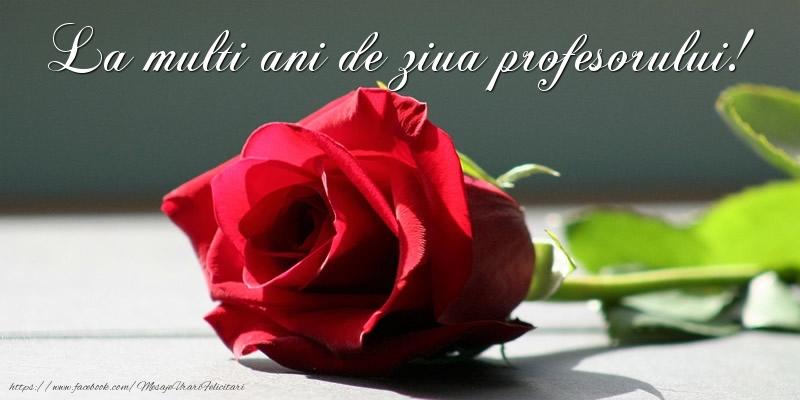 Felicitari de Ziua Profesorului - La multi ani de ziua profesorului! - mesajeurarifelicitari.com