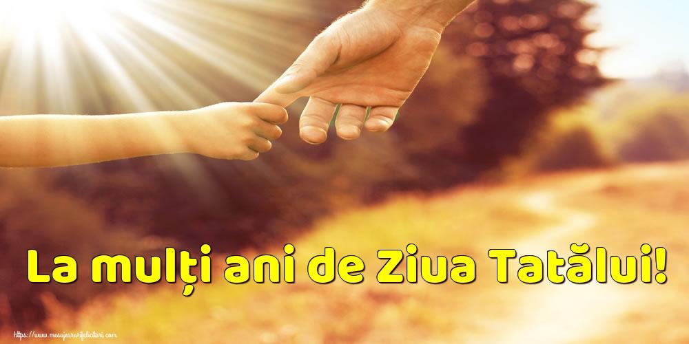 Felicitari de Ziua Tatalui - La mulți ani de Ziua Tatălui! - mesajeurarifelicitari.com