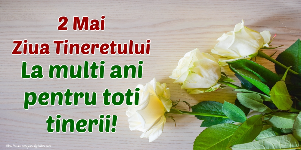 Felicitari de Ziua Tineretului - 2 Mai Ziua Tineretului La multi ani pentru toti tinerii!