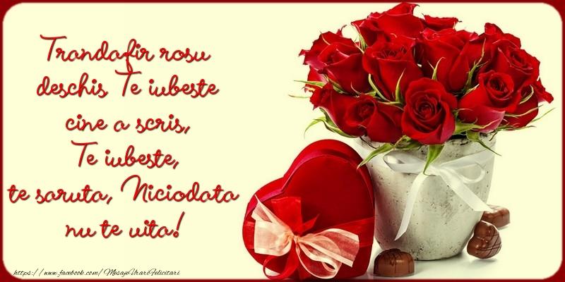 Trandafir rosu deschis Te iubeste cine a scris