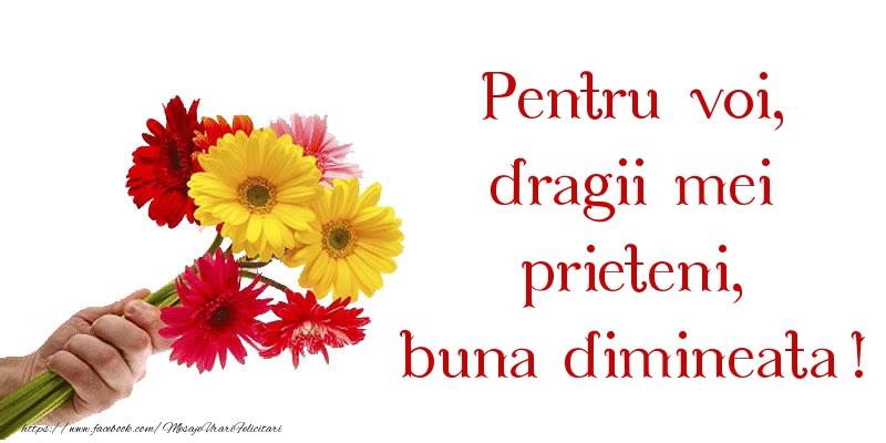 Pentru voi, dragii mei prieteni, buna dimineata!