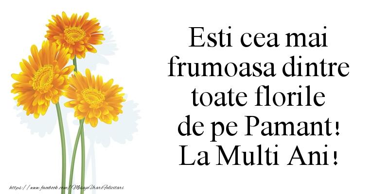 Cele mai frumoase mesaje felicitari de Florii
