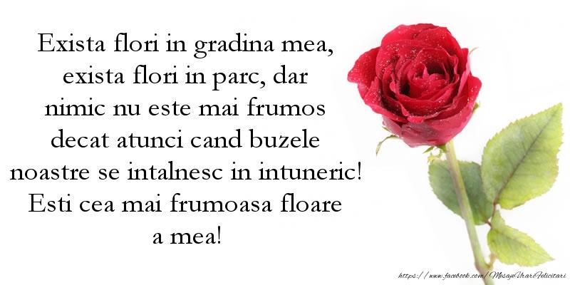 Mesaje de Florii - Esti cea mai frumoasa floare a mea - mesajeurarifelicitari.com