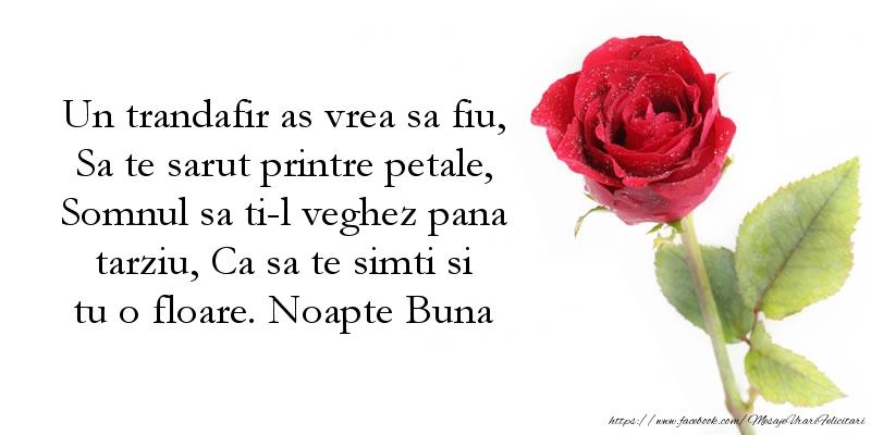 Un trandafir as vrea sa fiu