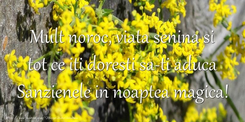 Cele mai frumoase mesaje felicitari de Sanziene