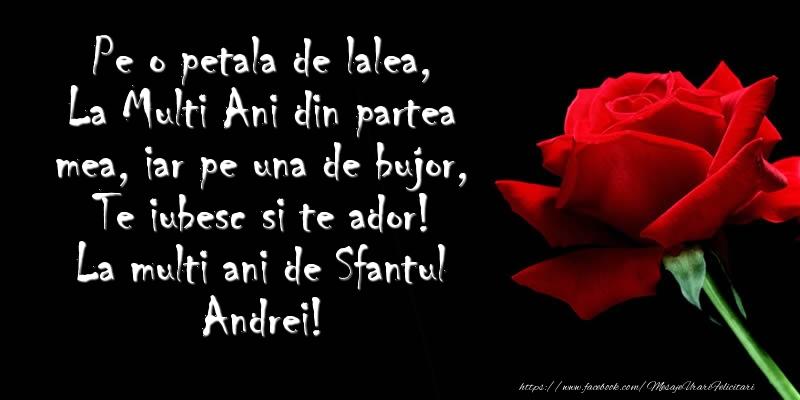 Mesaje de Sfantul Andrei - Pe o petala de lalea, La Multi Ani din partea mea, iar pe una de bujor, Te iubesc si te ador! La multi ani de Sfantul Andrei! - mesajeurarifelicitari.com