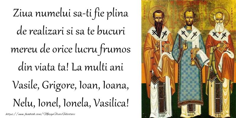 La multi ani Vasile, Grigore, Ioan, Ioana, Nelu, Ionel, Ionela, Vasilica!