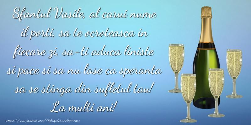 Sfantul Vasile, al carui nume il porti, sa te ocroteasca in fiecare zi ... La multi ani!