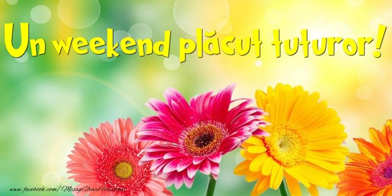 Un weekend plăcut tuturor!