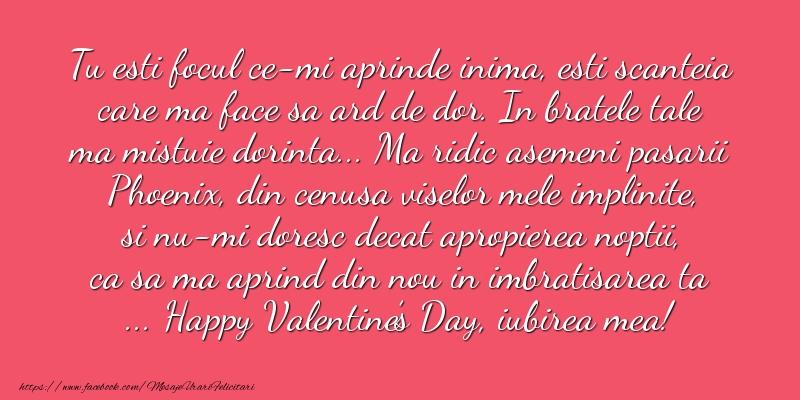 Mesaje Ziua indragostitilor - Happy Valentine's Day, iubirea mea! - mesajeurarifelicitari.com