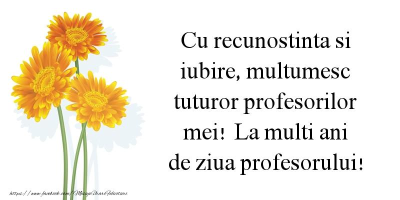 Cu recunostinta si iubire, multumesc tuturor profesorilor mei!