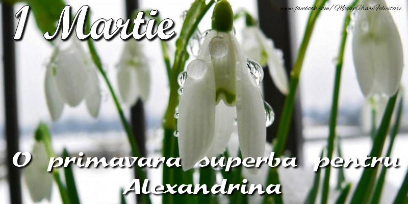 Felicitari de 1 Martie - O primavara superba pentru Alexandrina