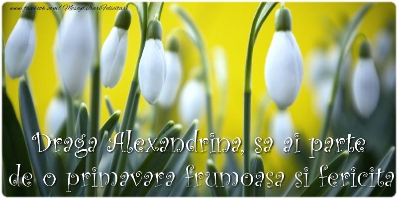 Felicitari de 1 Martie - Draga Alexandrina, sa ai parte de o primavara frumoasa si fericita