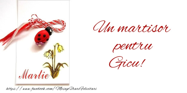 Felicitari de 1 Martie - Un martisor pentru Gicu!