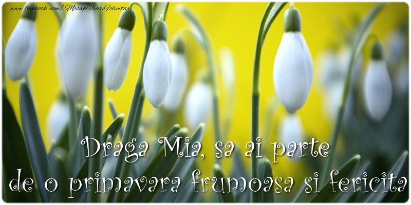 Felicitari de 1 Martie - Draga Mia, sa ai parte de o primavara frumoasa si fericita