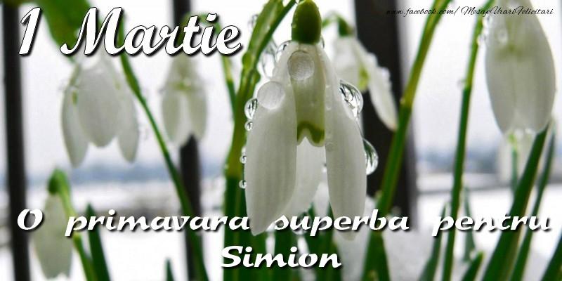 Felicitari de 1 Martie - O primavara superba pentru Simion