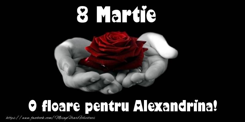 Felicitari de 8 Martie - 8 Martie O floare pentru Alexandrina!