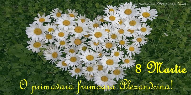 Felicitari de 8 Martie - O primavara frumoasa Alexandrina! 8 Martie
