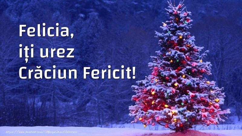 Felicitari de Craciun - Felicia, iți urez Crăciun Fericit!