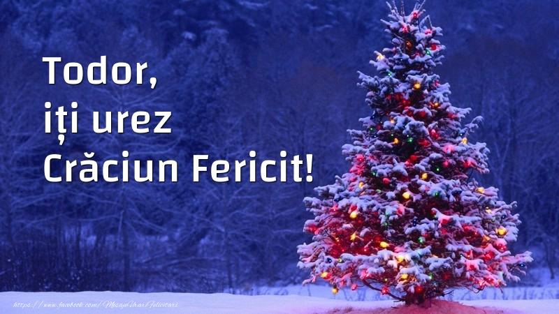 Felicitari de Craciun - Todor, iți urez Crăciun Fericit!