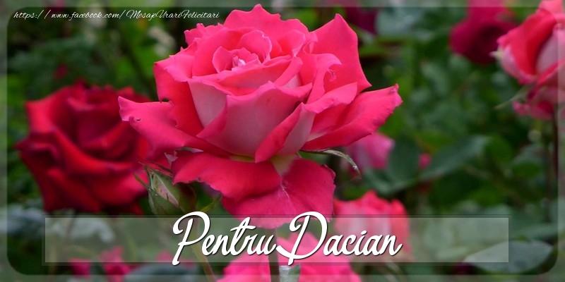 Felicitari Diverse - Pentru Dacian