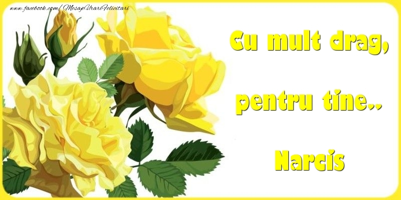 Felicitari Diverse - Cu mult drag, pentru tine.. Narcis