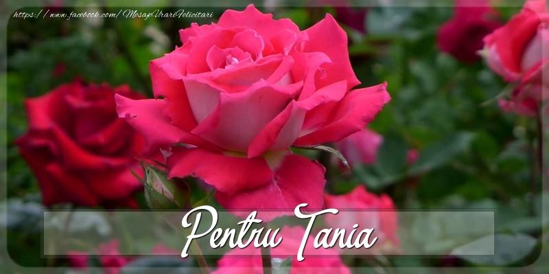 Felicitari Diverse - Pentru Tania