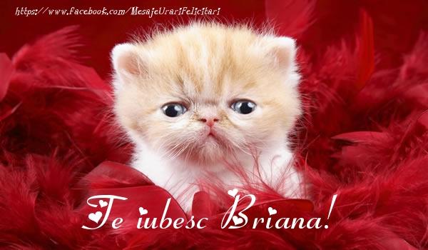 Felicitari de dragoste - Te iubesc Briana!